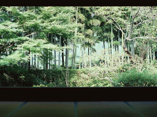 世界に誇る歌舞伎の舞台装置